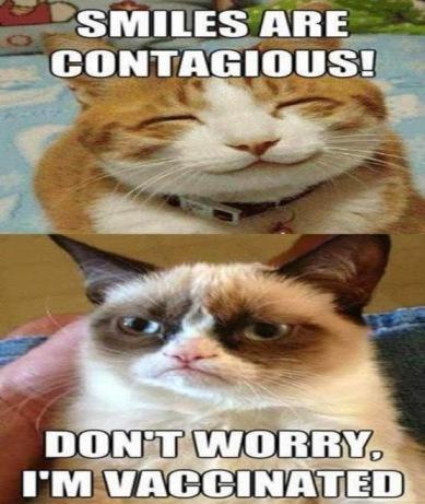 grumpy-cat-smiles-are-contagious